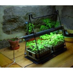 Ställning till växtbelysning