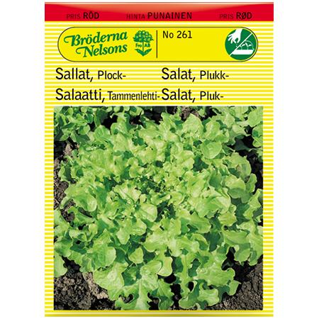 "Plocksallat ""Salad Bowl"""