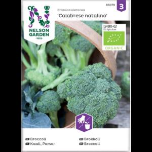 "|Broccoli ""Calabrese natalino"""